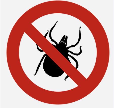 Schutz gegen Zecken - Zecken - vorbeugen, entfernen, bekämpfen